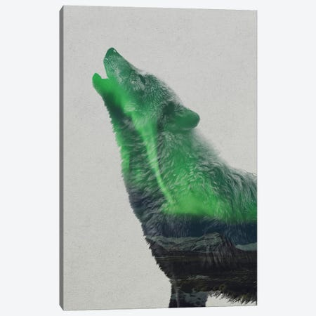 Aurora Borealis Series: Howling Wolf Canvas Print #ALE154} by Andreas Lie Canvas Wall Art