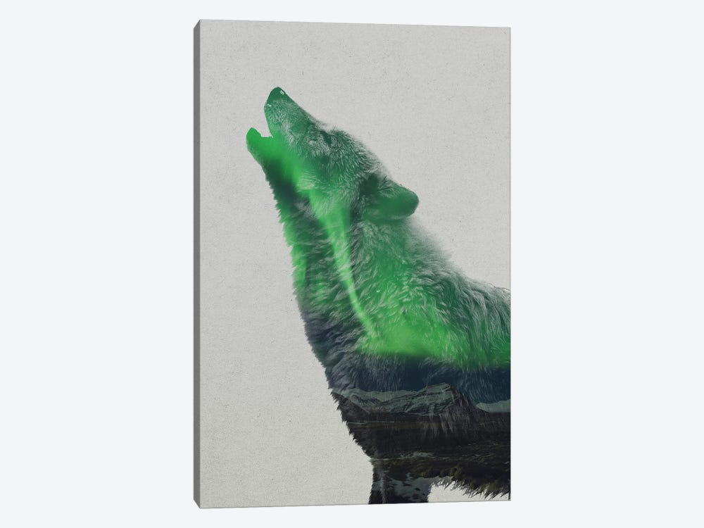 Howling Wolf by Andreas Lie 1-piece Canvas Art