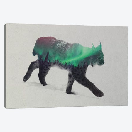 Aurora Borealis Series: Lynx Canvas Print #ALE155} by Andreas Lie Canvas Art