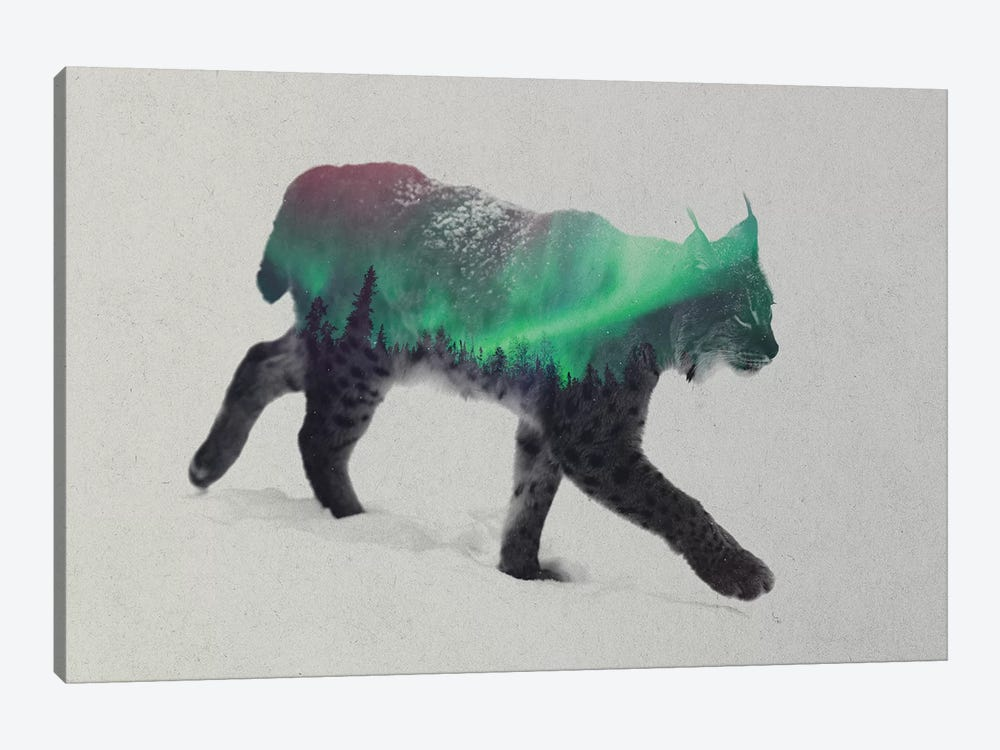 Aurora Borealis Series: Lynx by Andreas Lie 1-piece Art Print