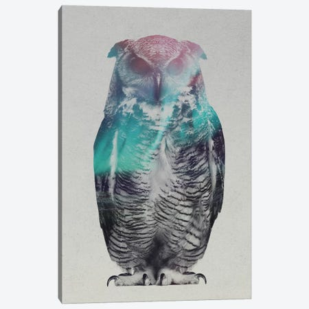 Owl Canvas Print #ALE156} by Andreas Lie Canvas Wall Art