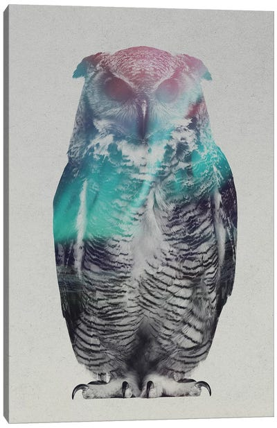 Aurora Borealis Series: Owl Canvas Art Print