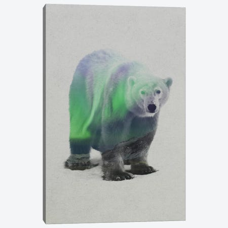 Polar Bear Canvas Print #ALE157} by Andreas Lie Canvas Wall Art