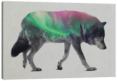 Aurora Borealis Series: Wolf Canvas Art Print