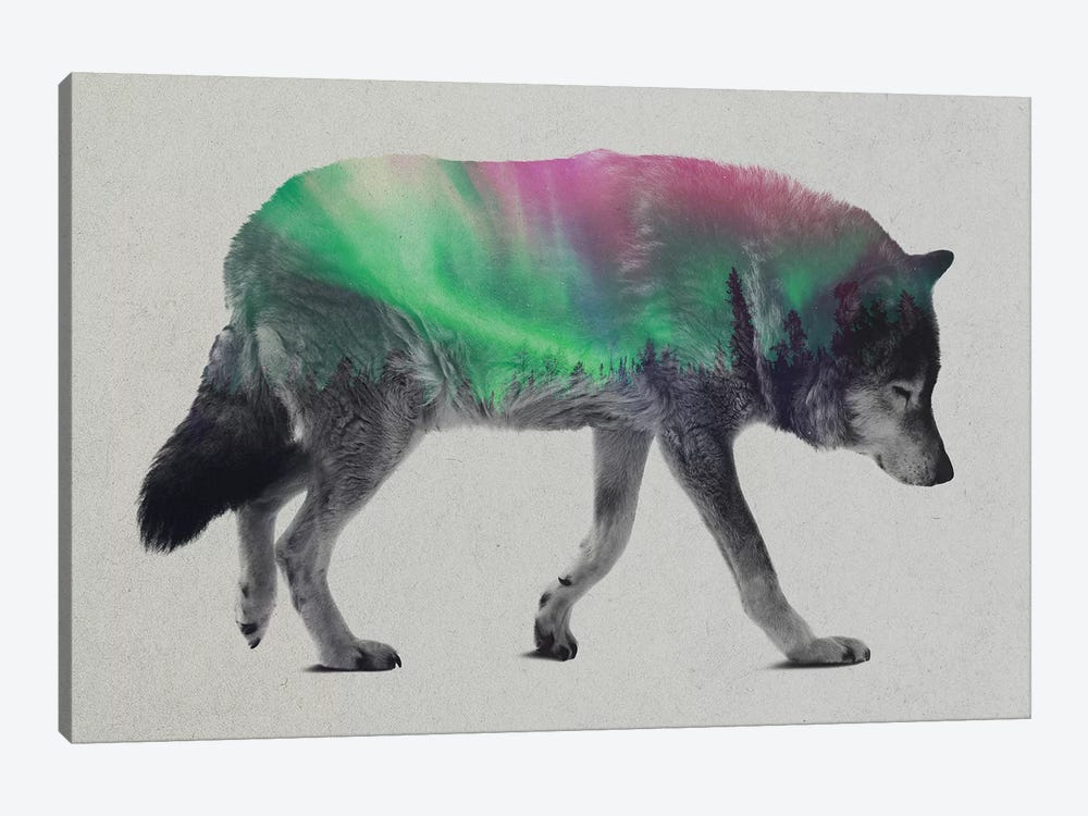 Wolf by Andreas Lie 1-piece Canvas Print
