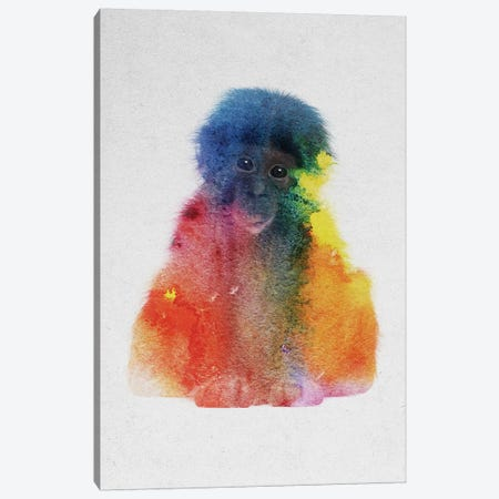Baby Monkey Canvas Print #ALE160} by Andreas Lie Canvas Artwork