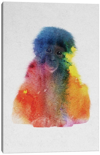Baby Monkey Canvas Art Print