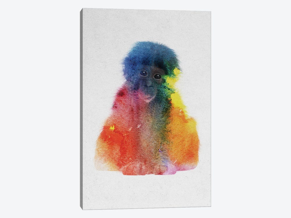 Baby Monkey by Andreas Lie 1-piece Canvas Print