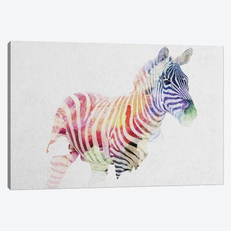 Zebra Canvas Print #ALE163} by Andreas Lie Canvas Art