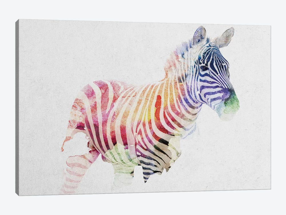 Zebra by Andreas Lie 1-piece Canvas Wall Art