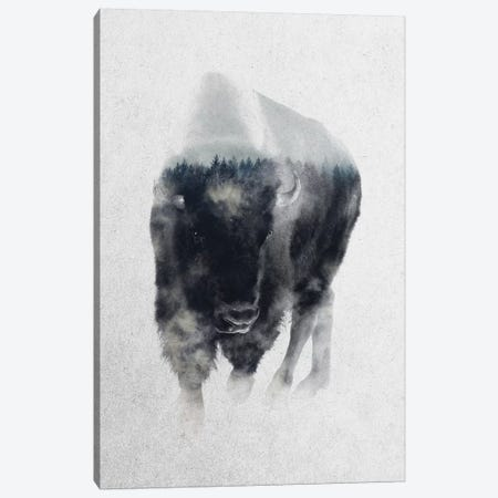 Bison In Mist Canvas Print #ALE165} by Andreas Lie Art Print