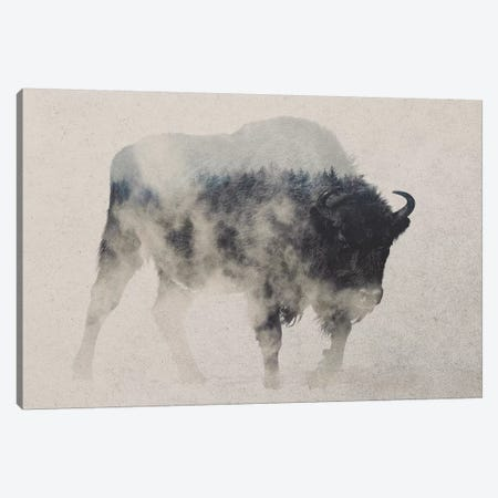 Bison In The Fog 3-Piece Canvas #ALE166} by Andreas Lie Art Print