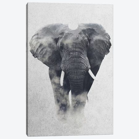 Elephant Canvas Print #ALE168} by Andreas Lie Canvas Art