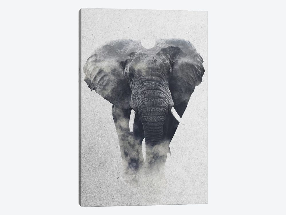 Elephant by Andreas Lie 1-piece Canvas Print