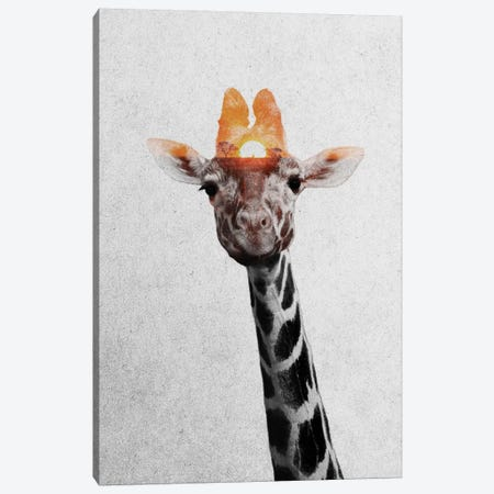 Giraffe II Canvas Print #ALE169} by Andreas Lie Canvas Wall Art