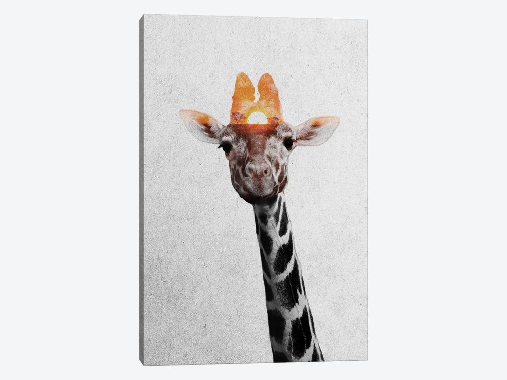 Giraffe II by Andreas Lie 1-piece Canvas Art