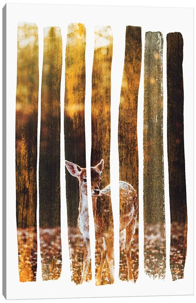 Fawn IV Canvas Art Print