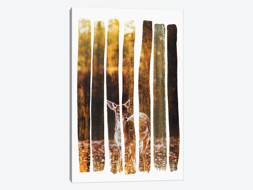Fawn IV by Andreas Lie 1-piece Canvas Print