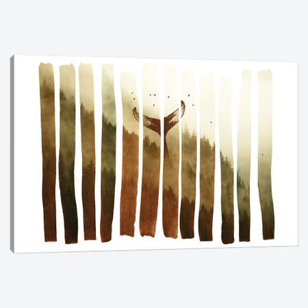 Tail Fin Canvas Print #ALE179} by Andreas Lie Canvas Print