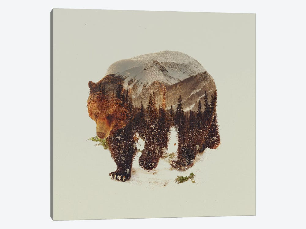 Bear I by Andreas Lie 1-piece Art Print