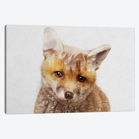 Fox Cub Canvas Print #ALE183} by Andreas Lie Canvas Artwork