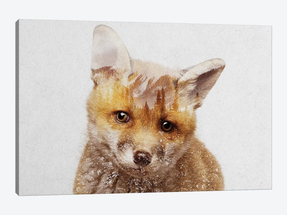 Fox Cub by Andreas Lie 1-piece Canvas Artwork