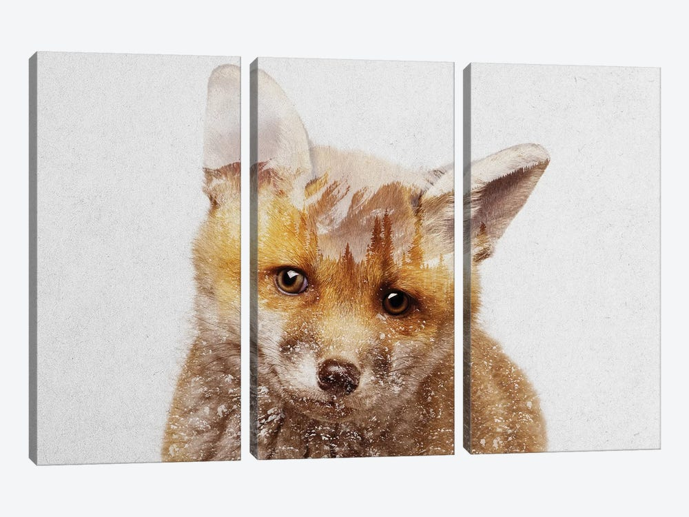 Fox Cub by Andreas Lie 3-piece Canvas Art