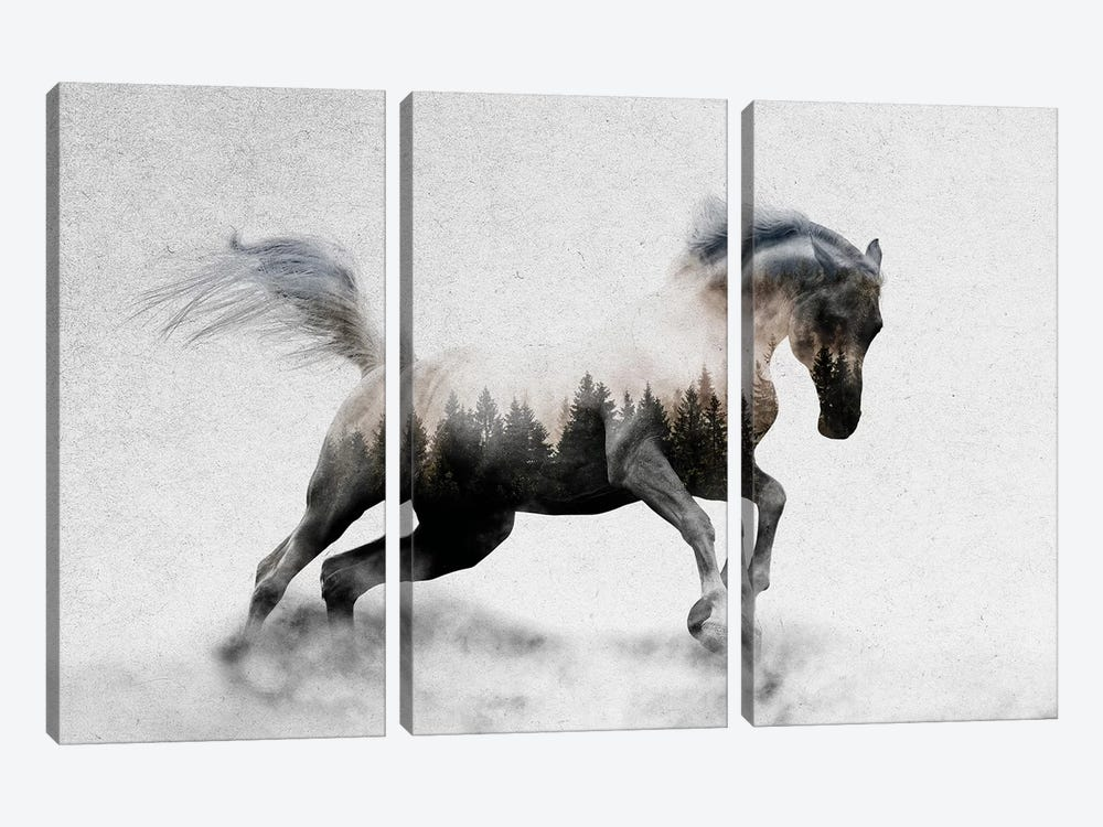 Hest I by Andreas Lie 3-piece Canvas Art Print