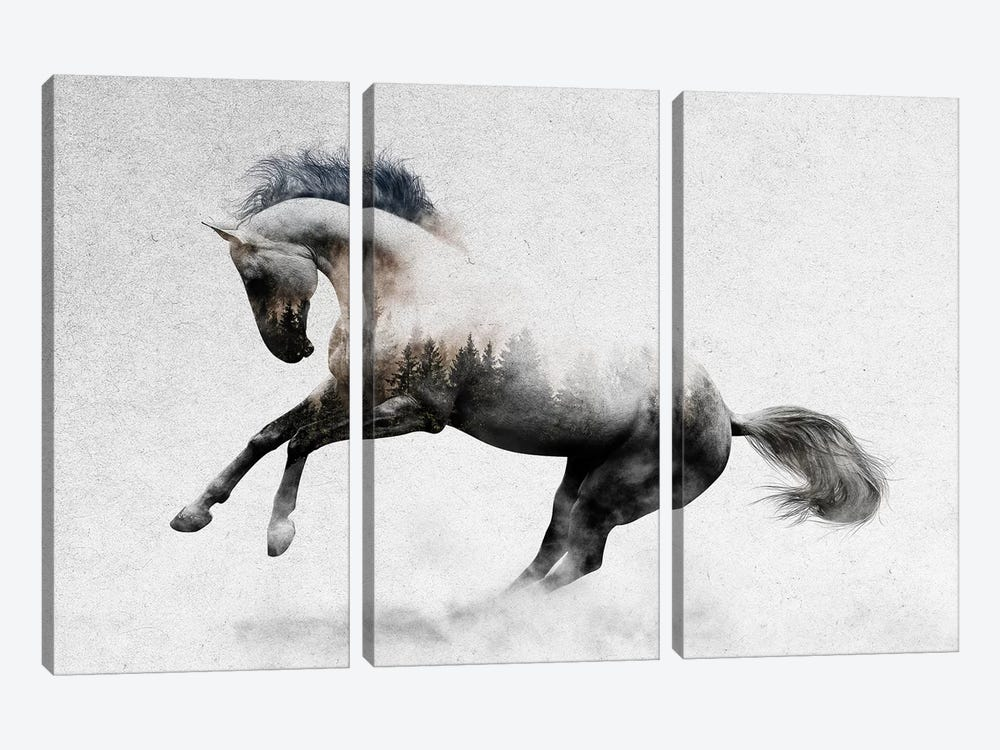 Hest II by Andreas Lie 3-piece Canvas Art