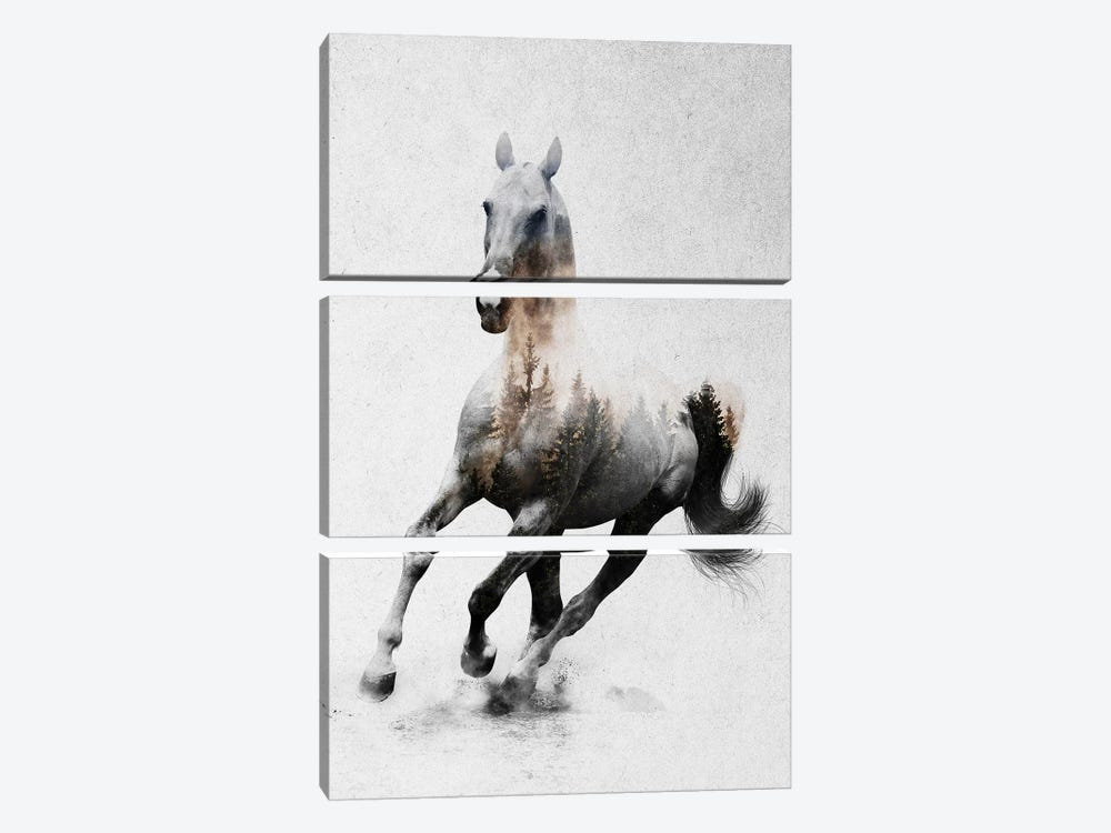 Horse IV by Andreas Lie 3-piece Art Print