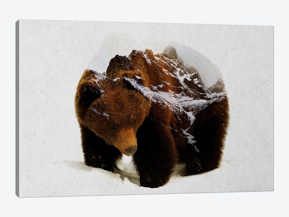 Bear In The Mountains by Andreas Lie 1-piece Canvas Art