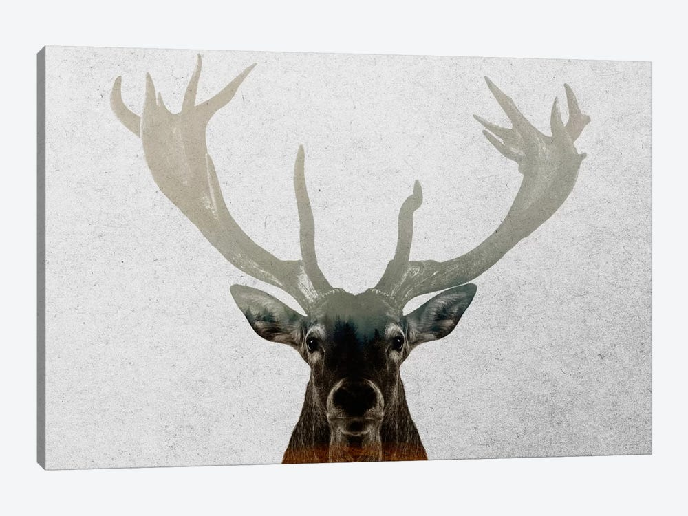 Deer by Andreas Lie 1-piece Canvas Artwork
