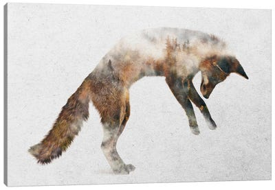 Jumping Fox Canvas Art Print