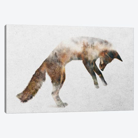Jumping Fox Canvas Print #ALE193} by Andreas Lie Canvas Art Print