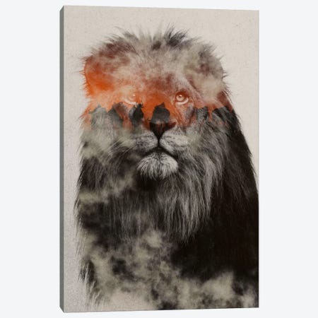 Lion Canvas Print #ALE194} by Andreas Lie Canvas Artwork