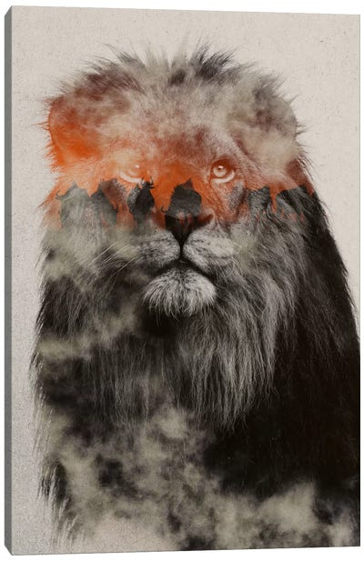 Lion Canvas Art Print
