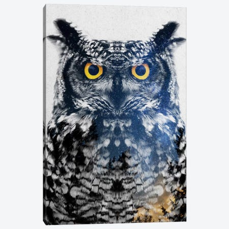 Night Owl Canvas Print #ALE195} by Andreas Lie Canvas Wall Art