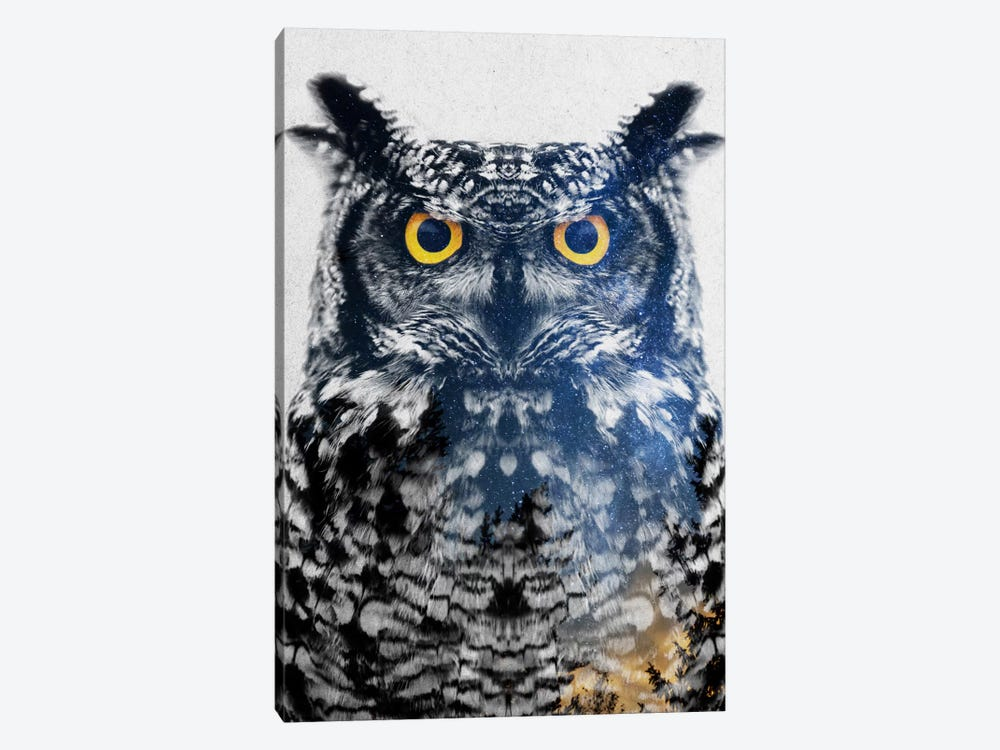 Night Owl by Andreas Lie 1-piece Canvas Print
