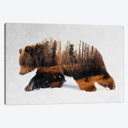 Travelling Bear Canvas Print #ALE197} by Andreas Lie Canvas Artwork
