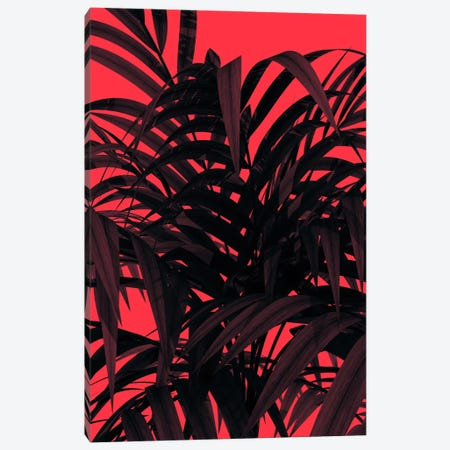 Tropic Leaf Canvas Print #ALE198} by Andreas Lie Canvas Art Print