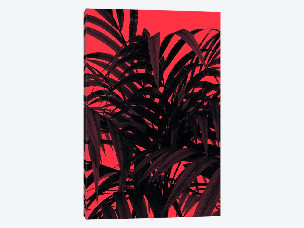 Tropic Leaf by Andreas Lie 1-piece Canvas Art