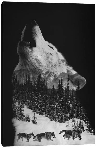 Wolfpack Canvas Art Print