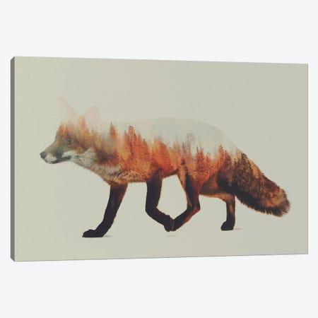 Fox I Canvas Print #ALE1} by Andreas Lie Art Print