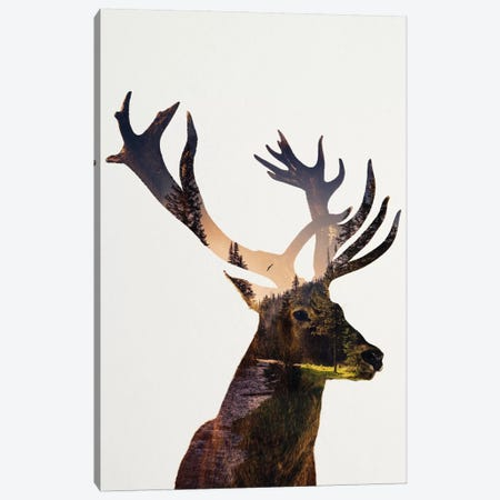 Deer In Forest Canvas Print #ALE203} by Andreas Lie Art Print