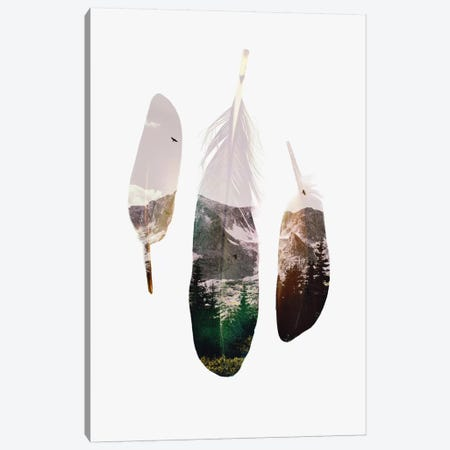 Feathers Canvas Print #ALE205} by Andreas Lie Canvas Artwork