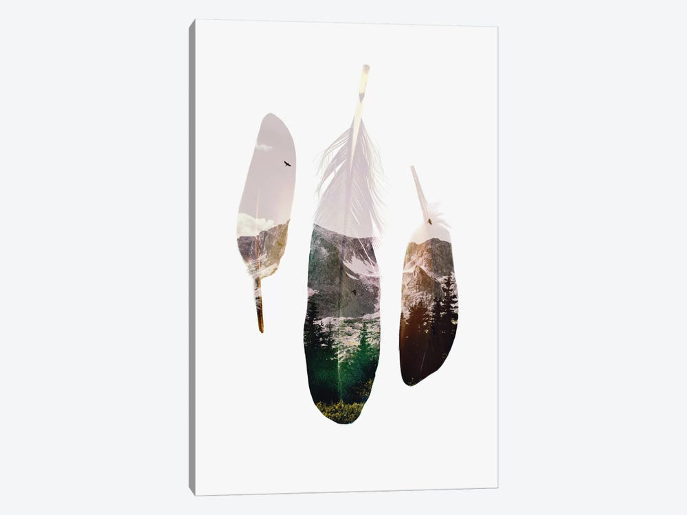 Feathers by Andreas Lie 1-piece Canvas Art