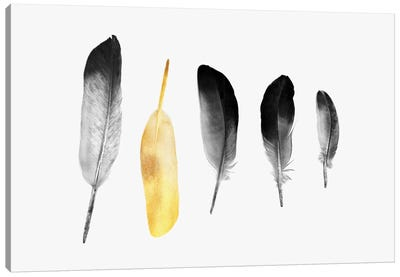 Golden Feather Canvas Art Print