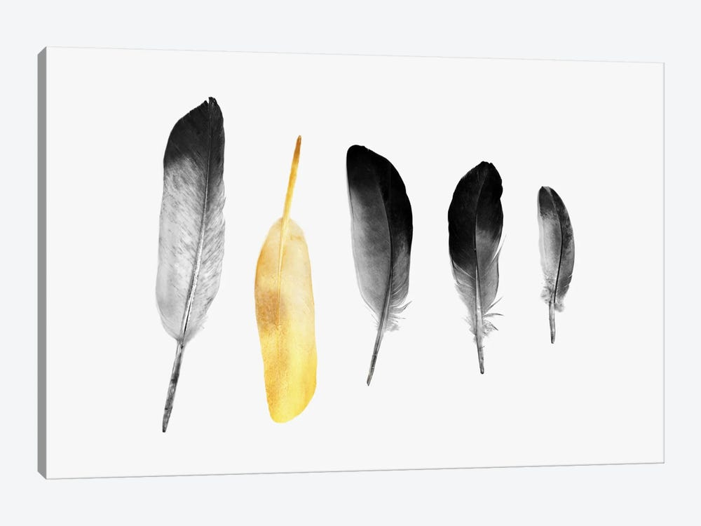 Golden Feather by Andreas Lie 1-piece Canvas Wall Art