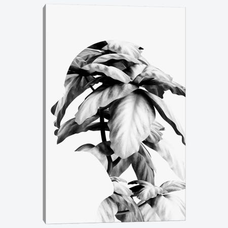 Mend Canvas Print #ALE222} by Andreas Lie Art Print