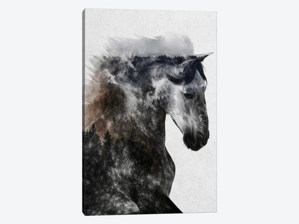 Proud Stallion by Andreas Lie 1-piece Canvas Art